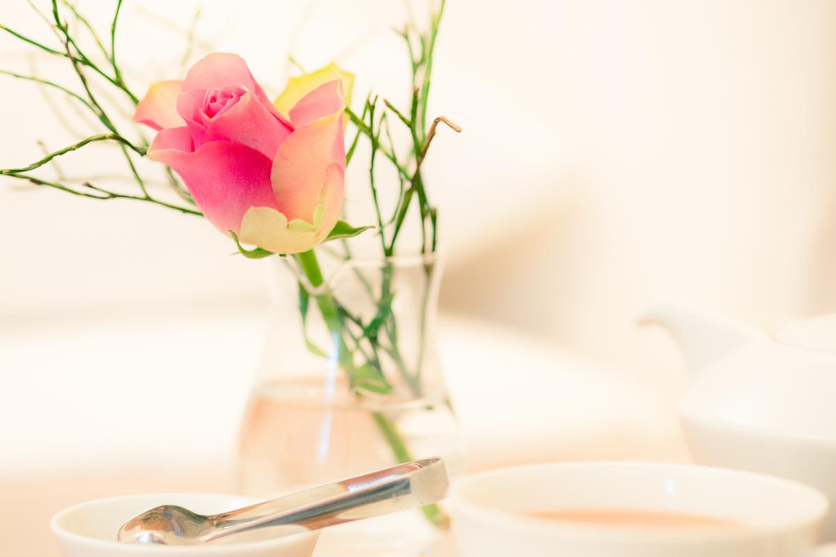 Stilleben Rose Tasse Tee